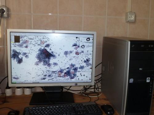 ordinateur red.jpg